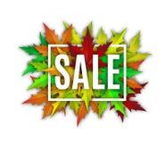 Jesieni sprzedaży wektoru sztandar Zdjęcie Royalty Free
