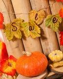 Jesieni sprzedaż Fotografia Stock