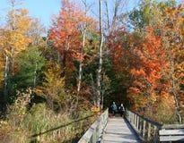 jesienią, stary, boardwalk pary Zdjęcia Royalty Free