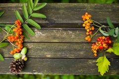 Jesieni stary drewniany tło z naturalnymi elementami Obrazy Stock