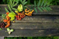 Jesieni stary drewniany tło z naturalnymi elementami: Obraz Royalty Free