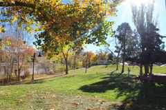 Jesieni Sunbeam Obrazy Stock