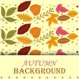 Jesieni tła liście ilustracji