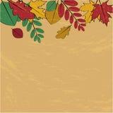 Jesieni tło Zdjęcia Stock