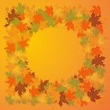 Jesieni tło liście klonowi Zdjęcie Royalty Free