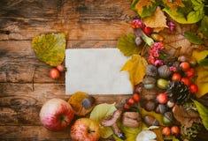 Jesieni tło, liście, pieczarki, jagody, dokrętki Zdjęcia Royalty Free