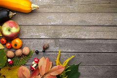 Jesieni tło na drewnie zdjęcie royalty free
