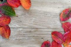Jesieni tło, stary drewno z czerwienią opuszcza w dwa kątach Fotografia Stock