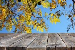 Jesieni tło z colorfull foilage tłem i wieśniaka drewnem wsiada w przodzie Fotografia Royalty Free