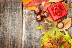 Jesieni tło z czerwonym prezenta pudełkiem Obraz Royalty Free