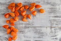 Jesieni tło z Delikatną jaskrawą pomarańczową pęcherzycą kno, także Obraz Stock