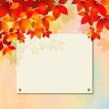 Jesieni tło z gipsującą ścianą, billboard Obraz Stock