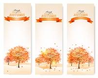 Jesieni tło z kolorowymi liśćmi i drzewami Wektorowy illustra Fotografia Stock