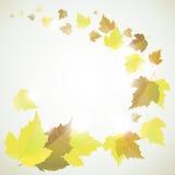Jesieni tło z liśćmi Zdjęcia Royalty Free