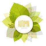 Jesieni tło z liśćmi Obrazy Royalty Free