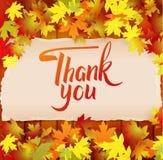 Jesieni tło z literowaniem Dziękuje Ciebie Obrazy Royalty Free
