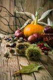 Jesieni tło z owoc fotografia stock