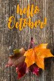 Jesieni tło z PAŹDZIERNIKÓW listami i jesień liśćmi CZEŚĆ zdjęcia royalty free