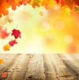 Jesieni tło z pustymi drewnianymi deskami Obraz Royalty Free