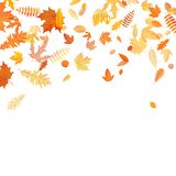 Jesieni tło z złotym klonem, dębem i inny, opuszcza 10 eps ilustracja wektor