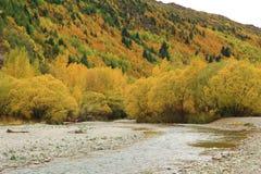 Jesieni tło Zdjęcie Royalty Free