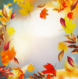 Jesieni tło z, spadek natura w ogródzie, park, lub, rama Fotografia Stock