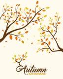 Jesieni tła projekta element Ilustracji