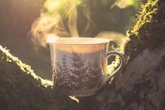 Jesieni teacup fotografia royalty free