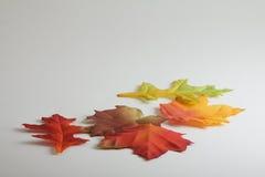 Jesieni tkaniny liście fotografia stock