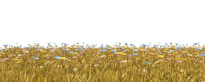 Jesieni trawa odizolowywająca na białej tła 3D ilustraci zdjęcia royalty free