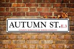 Jesieni ulica i jesień liście Zdjęcia Royalty Free