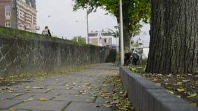Jesieni ulica w Amsterdam, kolorów żółtych liście Zdjęcia Royalty Free