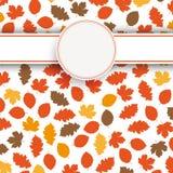 Jesieni ulistnienie Obraz Royalty Free