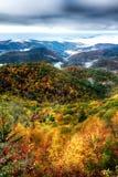 Jesieni ulistnienie na błękitnym grani parkway blisko maggie dolinnej północy ca obrazy royalty free