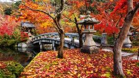 jesieni ulistnienie przy Eikando świątynią, Kyoto Zdjęcia Royalty Free