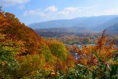 Jesieni ulistnienie w Aomori, Japonia Zdjęcie Stock