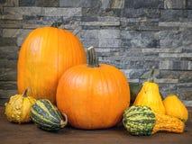 Jesieni uprawy obrazy stock