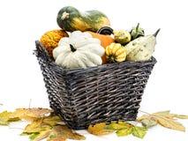 Jesieni uprawy zdjęcie stock