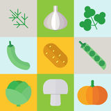Jesieni warzyw organicznie ikony ilustracyjne Set colo Obrazy Stock