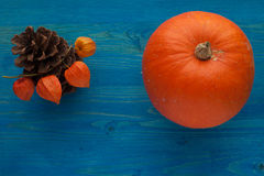 Jesieni warzywa Obrazy Stock