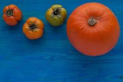 Jesieni warzywa Fotografia Stock