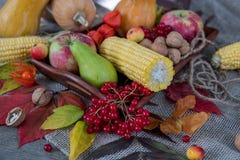 Jesieni warzywa, jagody i owoc, Sezonowy jesieni jedzenie - pu zdjęcie stock