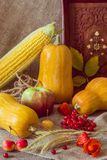 Jesieni warzywa, jagody i owoc, Sezonowy jesieni jedzenie - pu obrazy royalty free