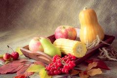 Jesieni warzywa, jagody i owoc, Sezonowy jesieni jedzenie - pu fotografia stock
