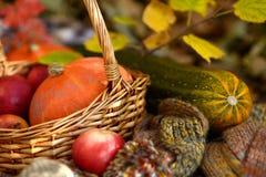 Jesieni warzywa w słomianym koszu Zdjęcie Stock