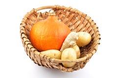 Jesieni warzywo Obrazy Stock