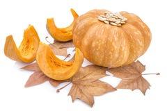 Jesieni warzywo i żółci dyniowi ziarna od go Fotografia Royalty Free