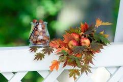 Jesieni wciąż życia obrazek Zdjęcia Stock