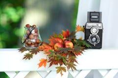 Jesieni wciąż życia obrazek Fotografia Royalty Free