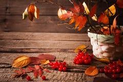 Jesieni wciąż życie Obraz Royalty Free